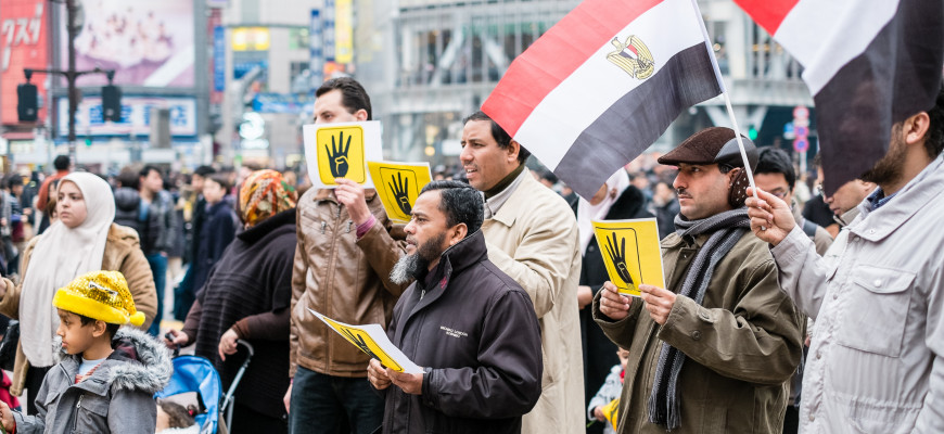 2014-01-25 Rally Egyptians Abroad for Democracy Japan