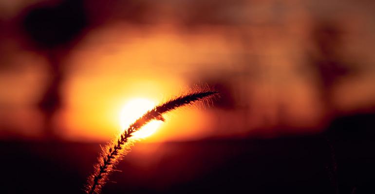 Sunset-Pic-04